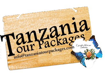 Tanzania Tour Packages